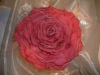 rosemellia
